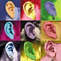 ears1.jpg
