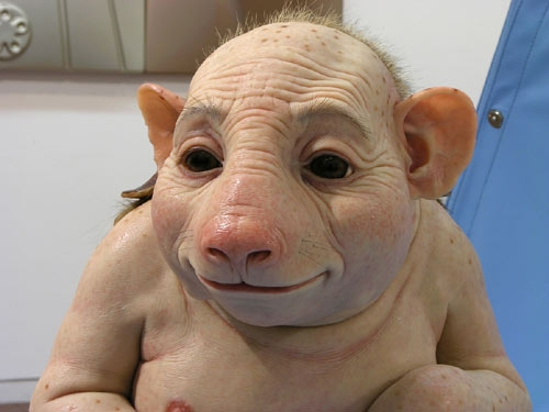 Swine FLu Face