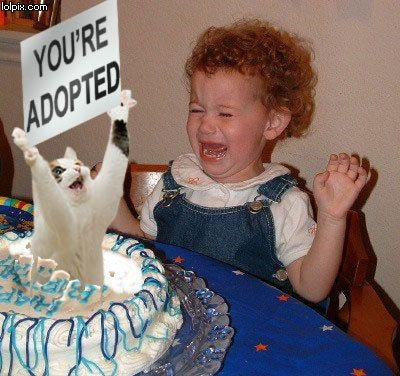 FUNNY PICTURES - Page 9 Funny_birthday