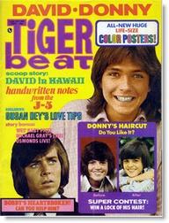 tiger beat